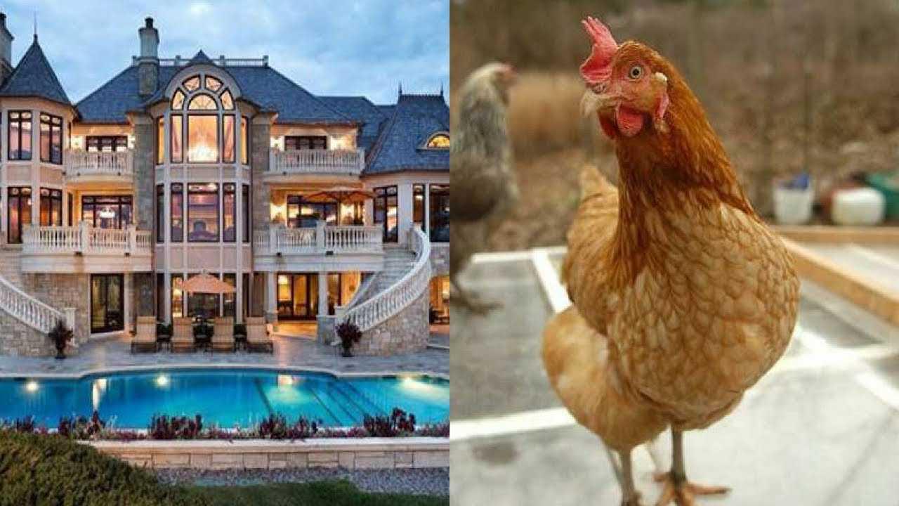 Richest animal in the world